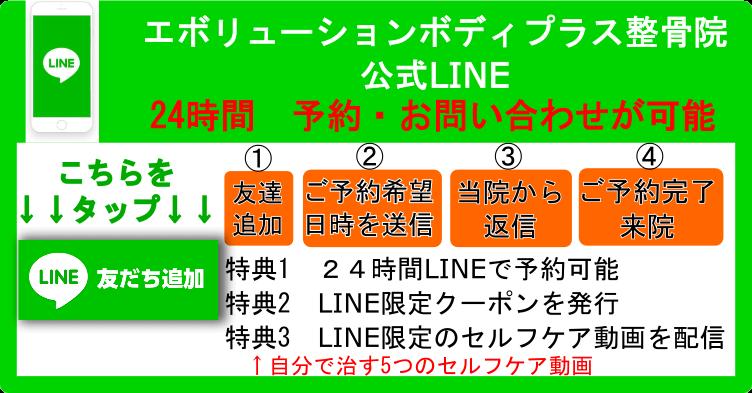 エボリューションボディ LINE